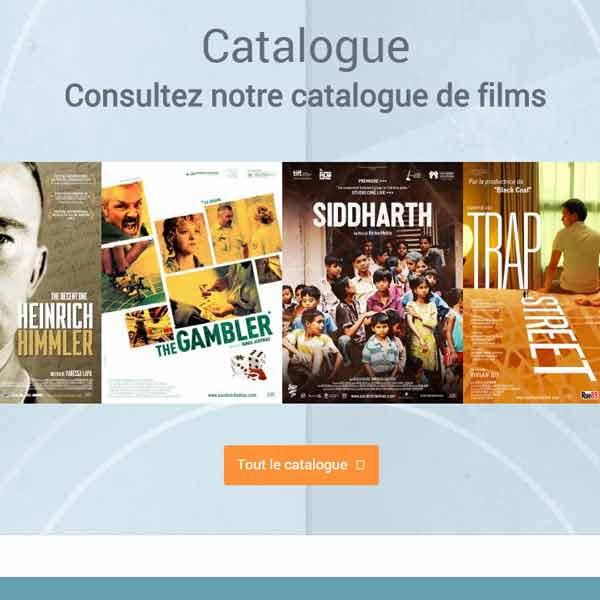 Aperçu de la page d'accueil du site d'ASC Distribution